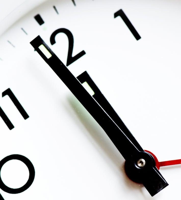 conifer-clock-280277